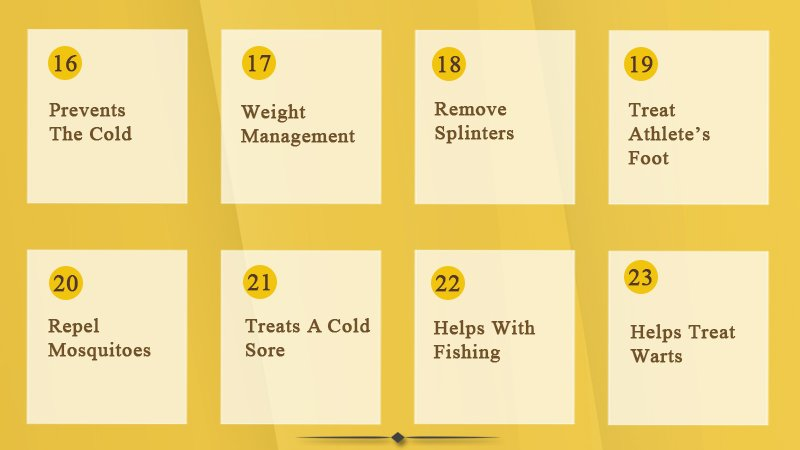 16-23-health benefits of garlic