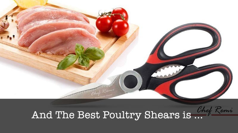 The Best Poultry Shears