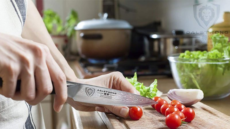 Recommended Dalstrong Knife