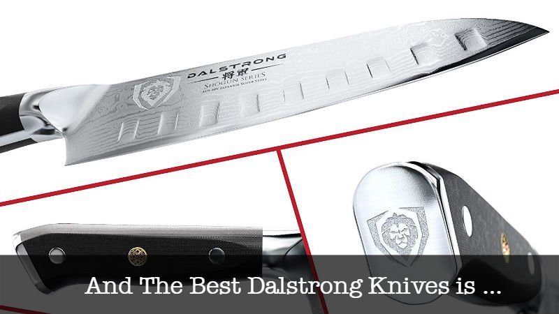 The Best Dalstrong Knives