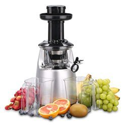 O-Breko Slow Masticating Juicer