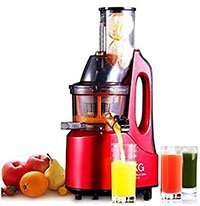 SKG Cold Press Masticating Juicer