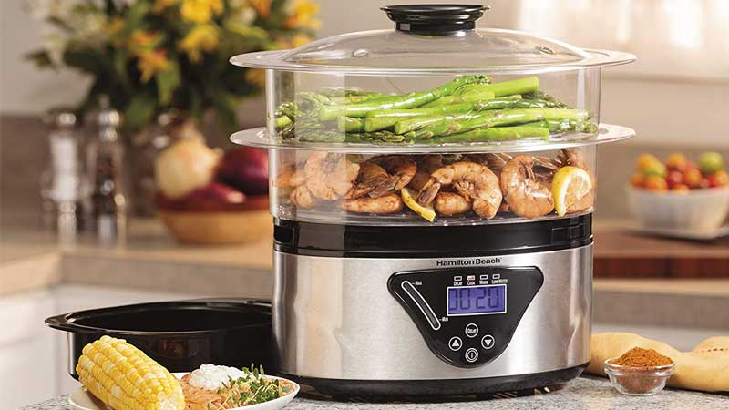 New Recommended Best Food Steamer