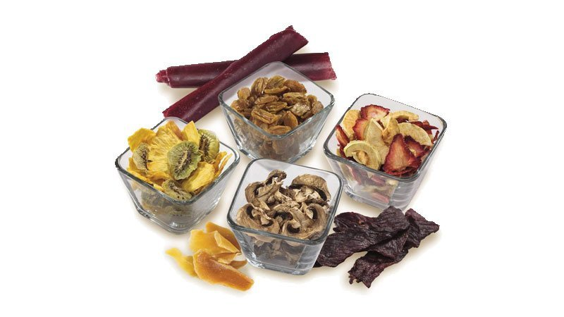Recommended Food Dehydrators for Jerky