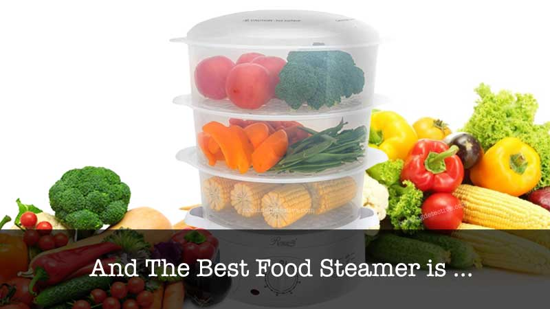 The Best Food Steamer