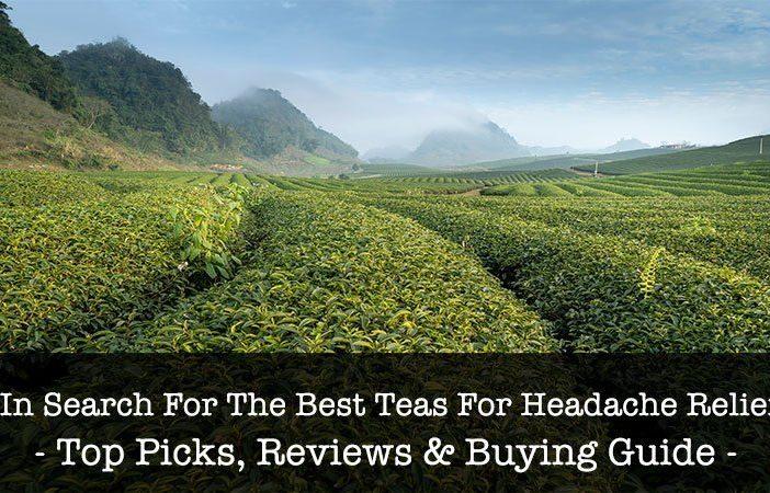 Best Teas For Headache