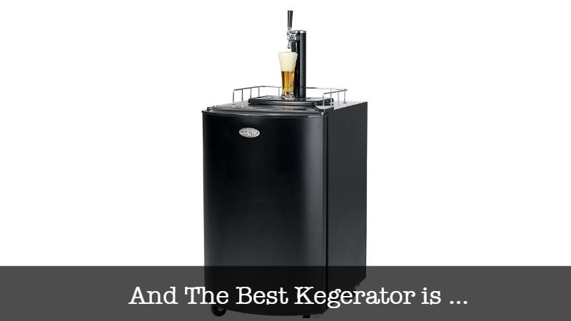 The Best Kegerator