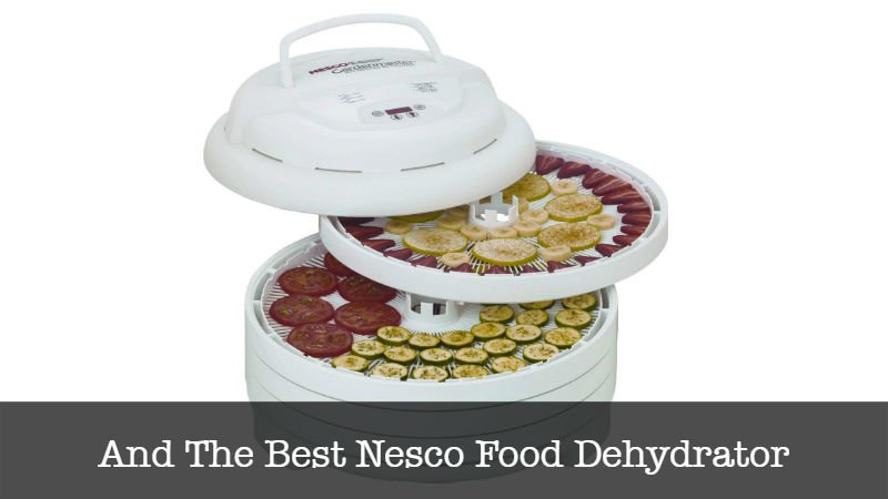 The Best Nesco Food Dehydrator