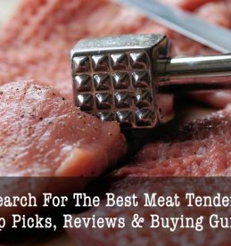 best meat tenderizers