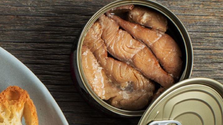 canned salmon buying guide