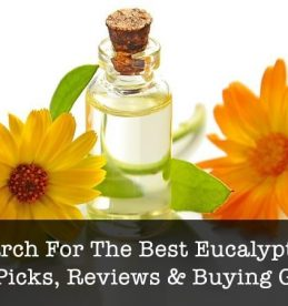 best eucalyptus oil