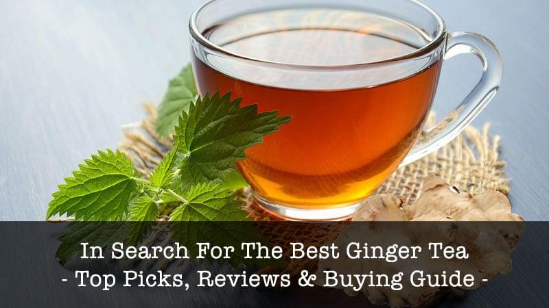 traditional-medicinals-organic-ginger-herbal.jpg