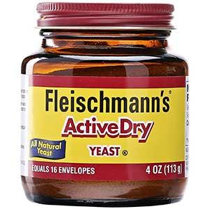 fleischmanns active dry