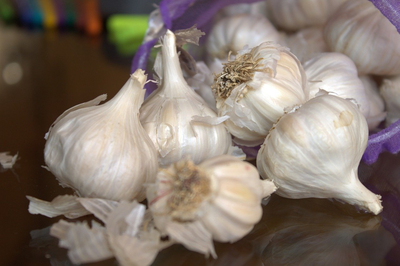 garlic mincer and crusher