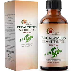 maple holistic's eucalyptus essential oil