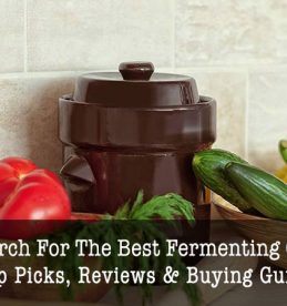best fermentation crock