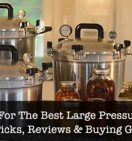 Best Large Pressure Cookers
