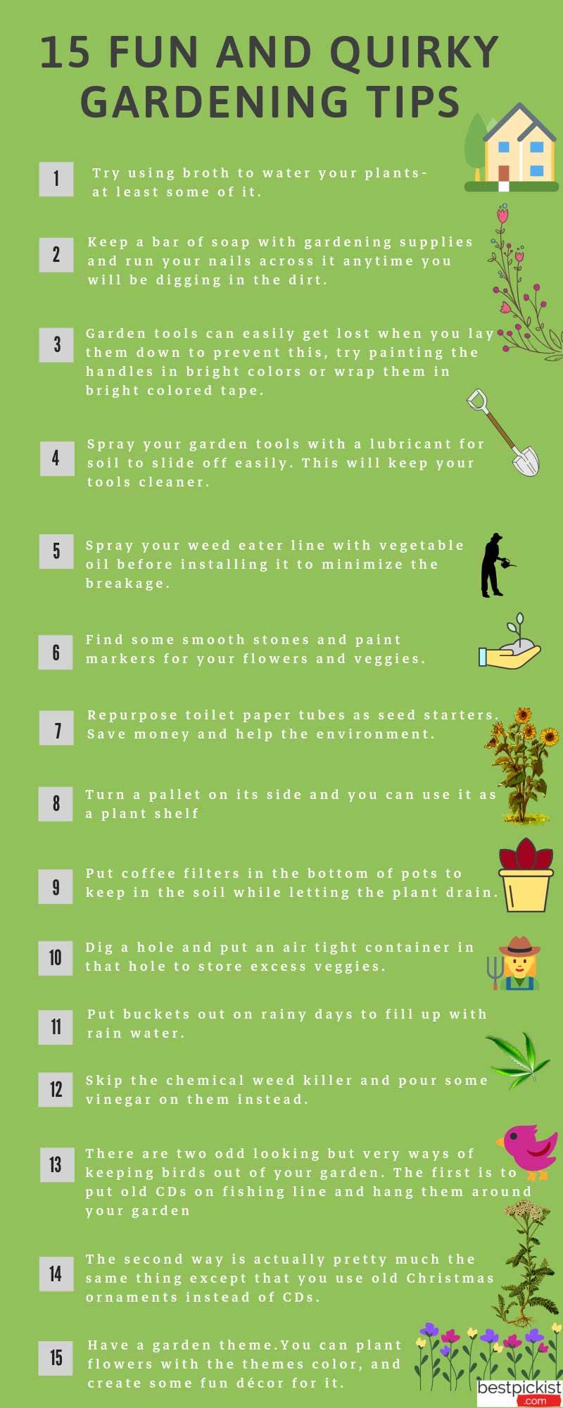 gardening tips for the beginner
