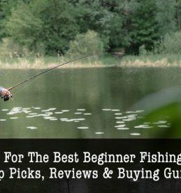best beginner fishing rod