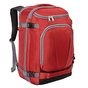 eBags Travel backpack for back pain