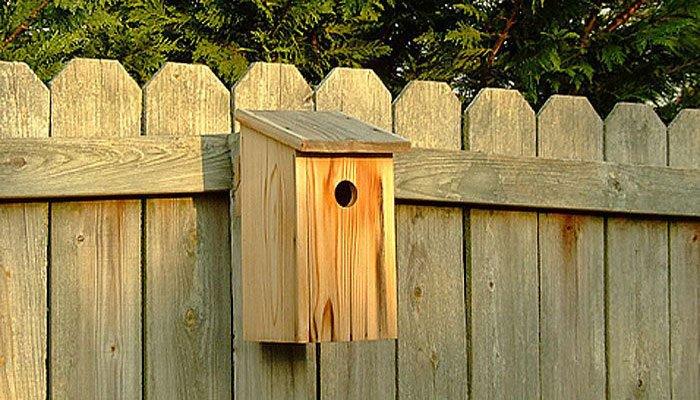 free birdhouse plan