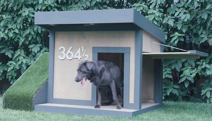 free doghouse plan