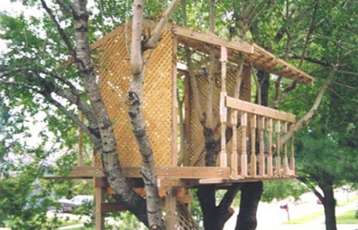 the lundgren tree house