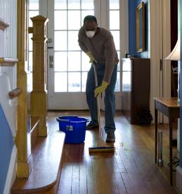 hardwood floor shine
