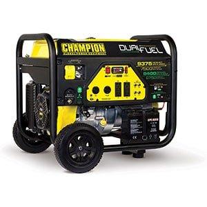 Dual Fuel Portable Generator