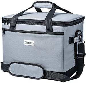 Olarhike-thermoelectric-cooler-bag