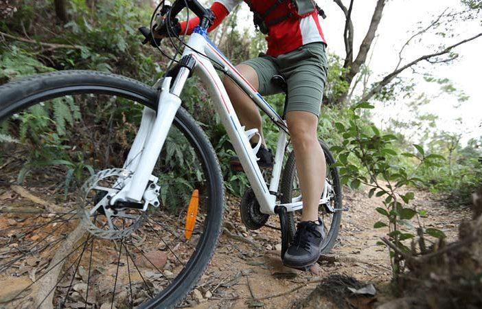 fixed gear bike vs single speed