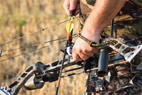 which bow is right for you