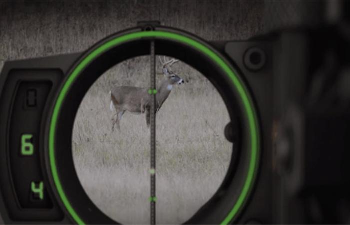 bow sight shot clarity