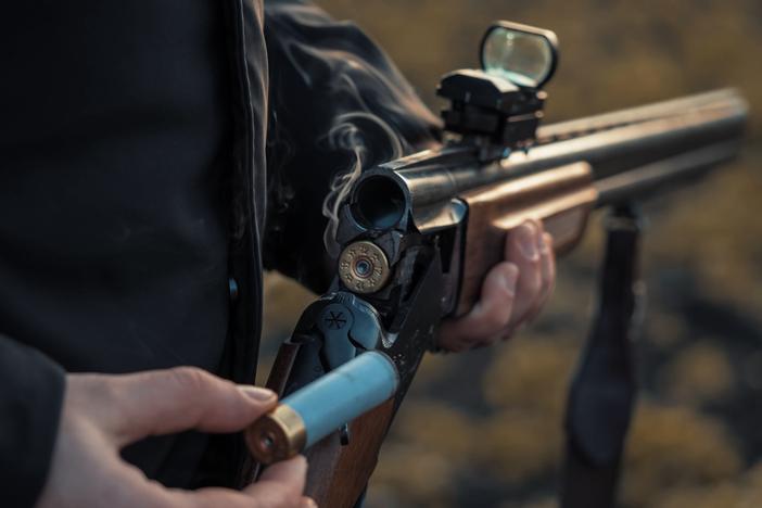 centerfire gun