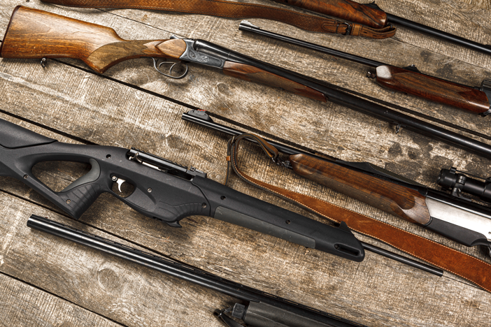 rimfire guns