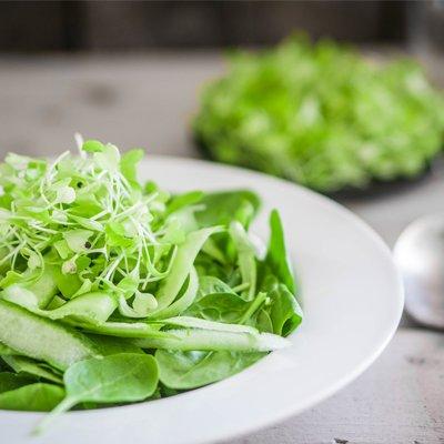 spinach-med
