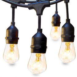 vintage-bulb
