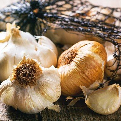 garlic-med-copy