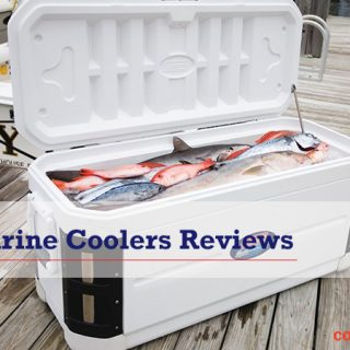 best marine coolers